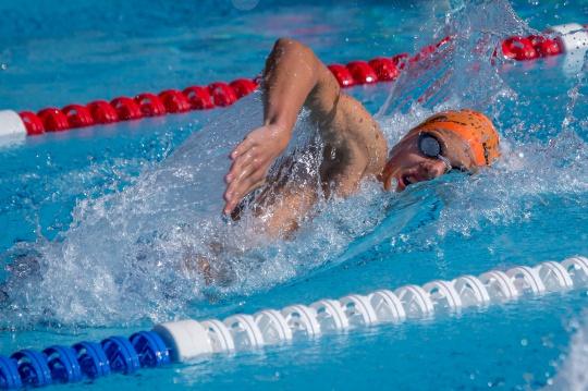 SM Schwimmen SH-Vorlauf8194-1.jpg