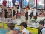 Trofeo Bustelli Lugano 4-5Febbraio 2012 (17).JPG