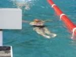 Campionati Ticinesi Locarno 18-19 Giugno 2011 (40).JPG